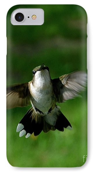Hovering Hummingbird  IPhone Case by Sue Stefanowicz