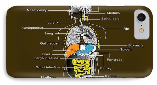 Human Internal Organs, Diagram Phone Case by Francis Leroy, Biocosmos