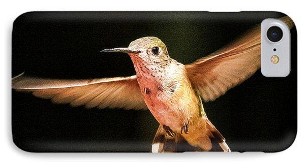 Hummingbird  IPhone Case by Albert Seger