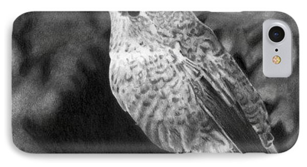 IPhone Case featuring the drawing Hummingbird by Ana Tirolese