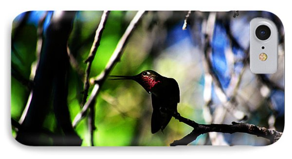 IPhone Case featuring the photograph Hummingbird Resting On A Twig by Susanne Still