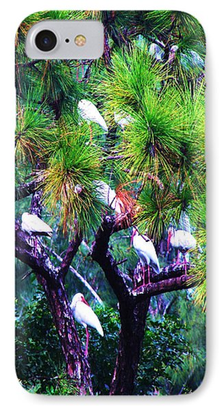 IPhone Case featuring the photograph Ibis-gone To Roost-2 by Joy Braverman