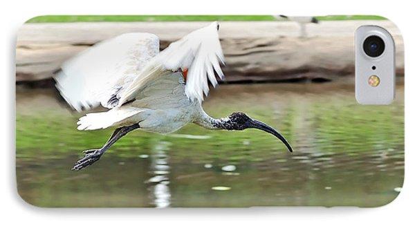 Ibis In Flight IPhone Case by Kaye Menner