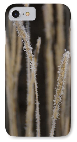 IPhone Case featuring the photograph Ice Crystals On Tall Grass by Mick Anderson