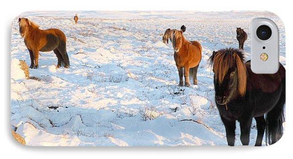 Iceland IPhone Case by Milena Boeva