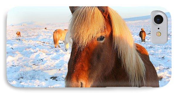 Icelandic Horse IPhone Case by Milena Boeva