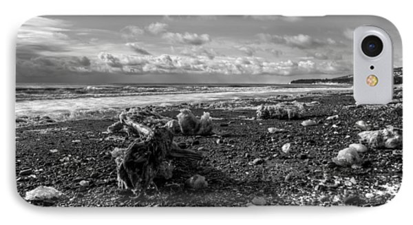 IPhone Case featuring the photograph Icy Alaskan Beach by Michele Cornelius