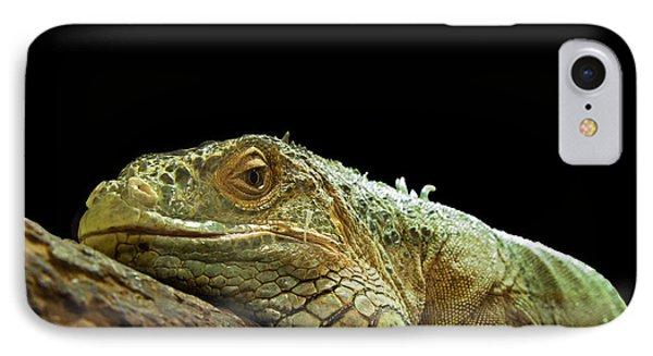 Iguana IPhone Case by Jane Rix