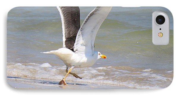 Im Out Of Here - Lesser Black-backed Gull Phone Case by Roena King