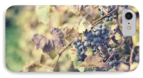 In The Vineyard Phone Case by Lisa Russo