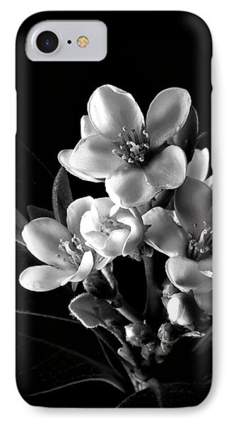 Indian Hawthorn In Black And White IPhone Case