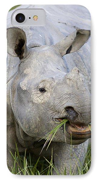Indian Rhinoceros Grazing Kaziranga IPhone Case by Suzi Eszterhas