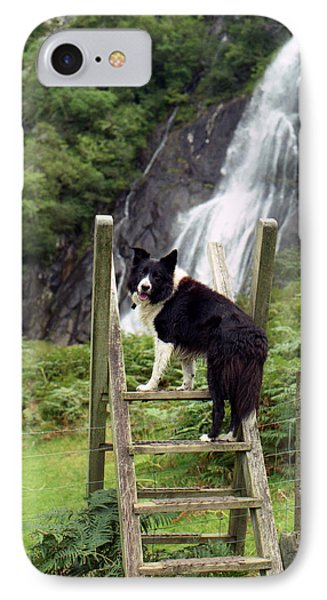 Indy At Aber Falls Phone Case by Michael Haslam