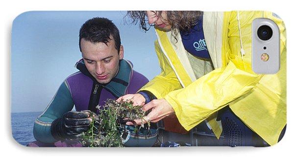 Invasive Seaweed Control Phone Case by Alexis Rosenfeld
