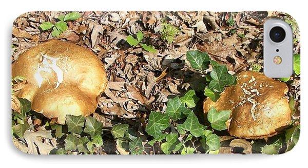 Invasive Shrooms IPhone Case by Pamela Hyde Wilson