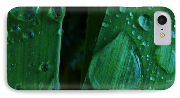 Iris Drops IPhone Case by Barbara St Jean