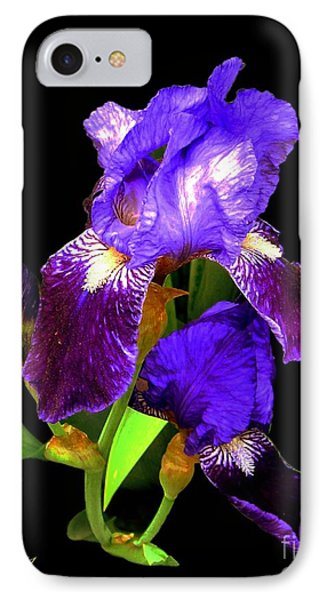 Iris On Black IPhone Case by Dale   Ford