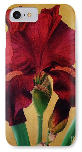 IPhone Case featuring the painting Iris by Paula L
