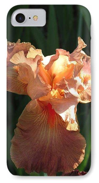 Iris Peach IPhone Case by Rebecca Overton