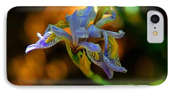 IPhone Case featuring the photograph Iris by Tam Ryan