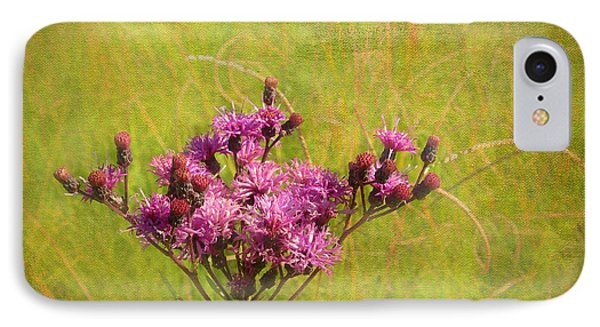 Ironweed In Autumn Phone Case by Judi Bagwell