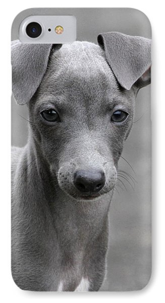 Italian Greyhound Puppy 2 Phone Case by Angie Vogel