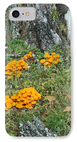 Jack Olantern Mushrooms 16 IPhone Case