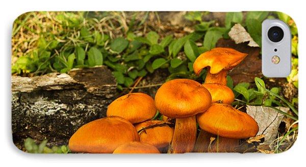 Jack Olantern Mushrooms 7 Phone Case by Douglas Barnett