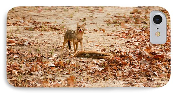 IPhone Case featuring the photograph Jackal Standing Over Deer Kill by Fotosas Photography