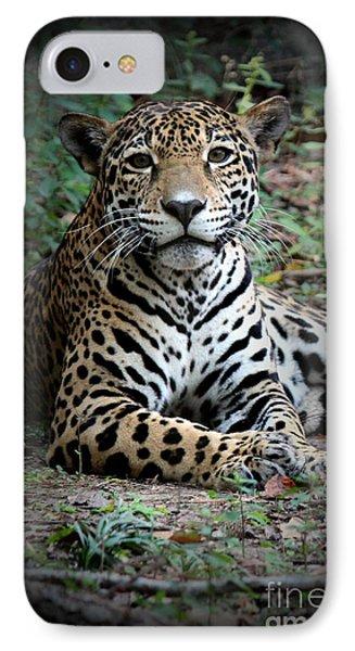 IPhone Case featuring the photograph Jaguar Portrait by Kathy  White