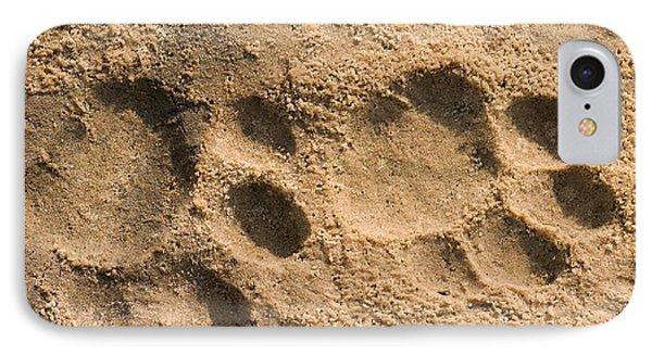 Jaguar Tracks Phone Case by Tony Camacho