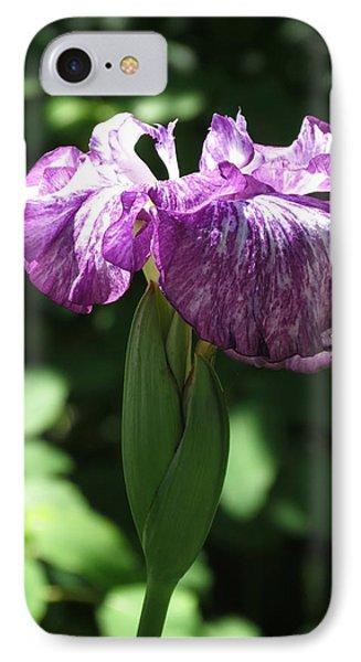 Japanese Iris IPhone Case by Rebecca Overton
