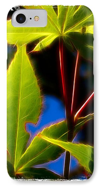 Japanese Maple Leaves IPhone Case by Judi Bagwell