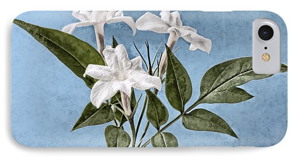 Jasminum Officinale IPhone Case
