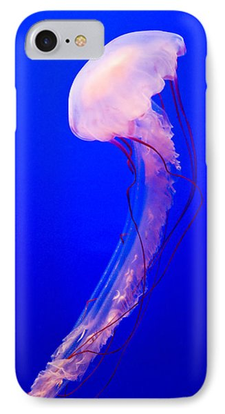 Jellyfish IPhone Case by Shane Kelly