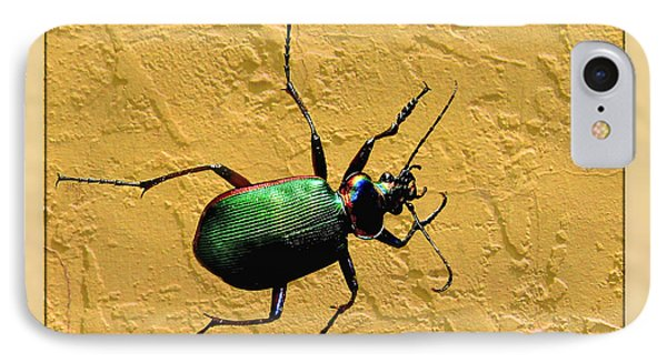 IPhone Case featuring the photograph Jeweltone Beetle by Debbie Portwood