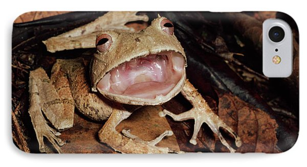 Johnsons Horned Treefrog Hemiphractus Phone Case by Michael & Patricia Fogden