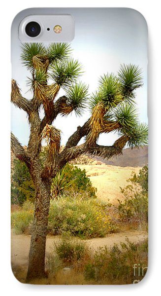IPhone Case featuring the photograph Joshua Tree by Jim McCain