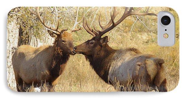 Junior Meets Bull Elk Phone Case by Robert Frederick