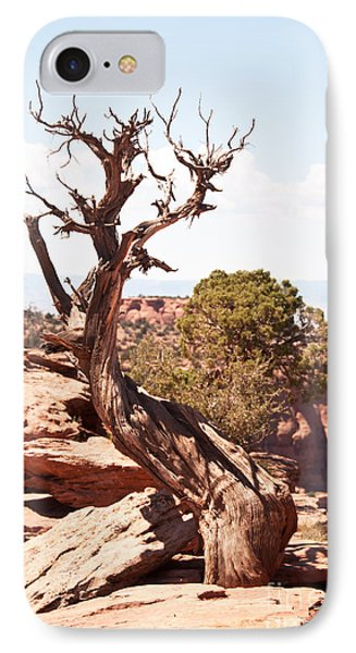 Juniper - Colorado National Monument Phone Case by Bob and Nancy Kendrick
