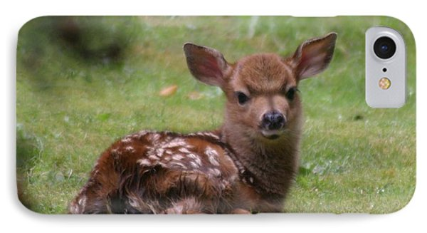 Just Born Bambi Phone Case by Kym Backland