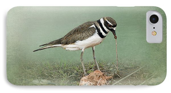 Killdeer And Worm IPhone Case by Betty LaRue