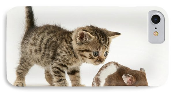 Kitten And Hamster Phone Case by Jane Burton
