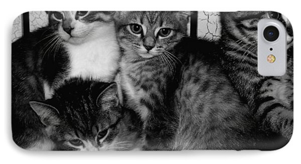 Kittens Corner Phone Case by Christy Leigh