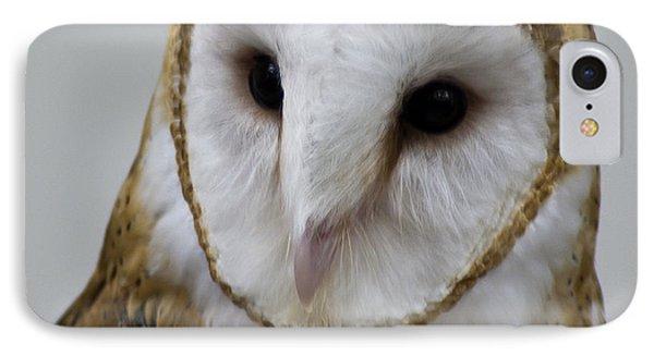 Knowing Barn Owl Phone Case by LeeAnn McLaneGoetz McLaneGoetzStudioLLCcom