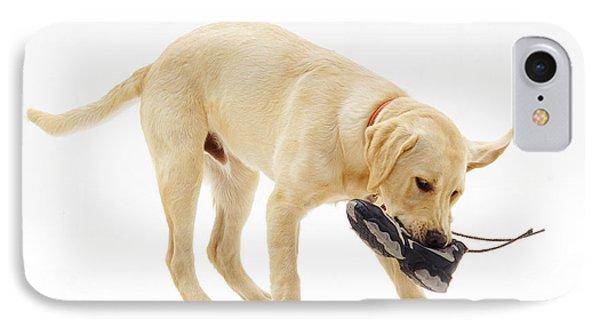 Labrador X Golden Retriever Puppy Phone Case by Jane Burton
