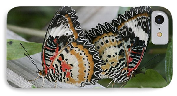 Lacewing Butterfly Cethosia Cyane IPhone Case by Lilach Weiss