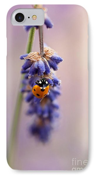 Ladybird And Lavender IPhone Case by John Edwards