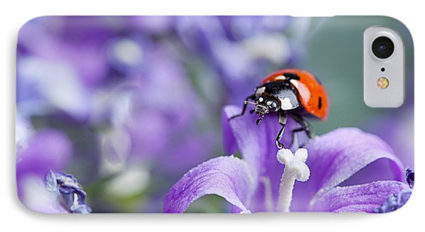 Ladybug And Bellflowers IPhone 7 Case by Nailia Schwarz