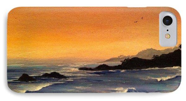 Laguna Sunset Phone Case by Barbara Gilroy